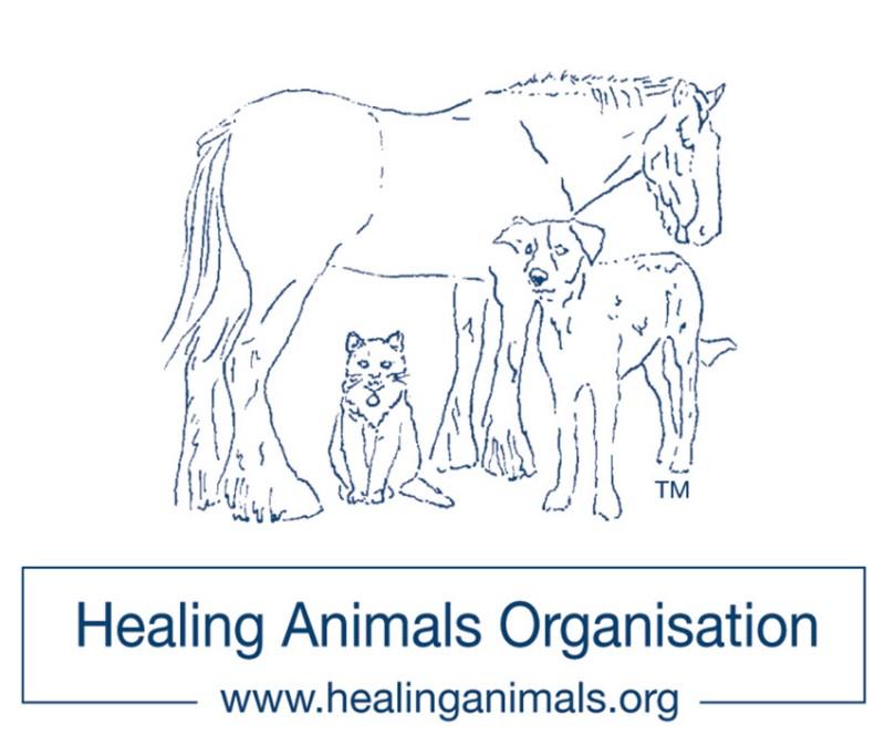 Official-LOGO-1-healing-animals-logo-Plain-Printer-Quality